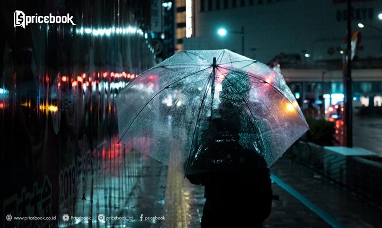 10 Cara Memanfaatkan Hujan Untuk Hasil Foto Terbaik