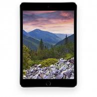 Apple iPad Pro 10.5 in. Wi-Fi 256GB