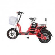 Selis Butterly Trike